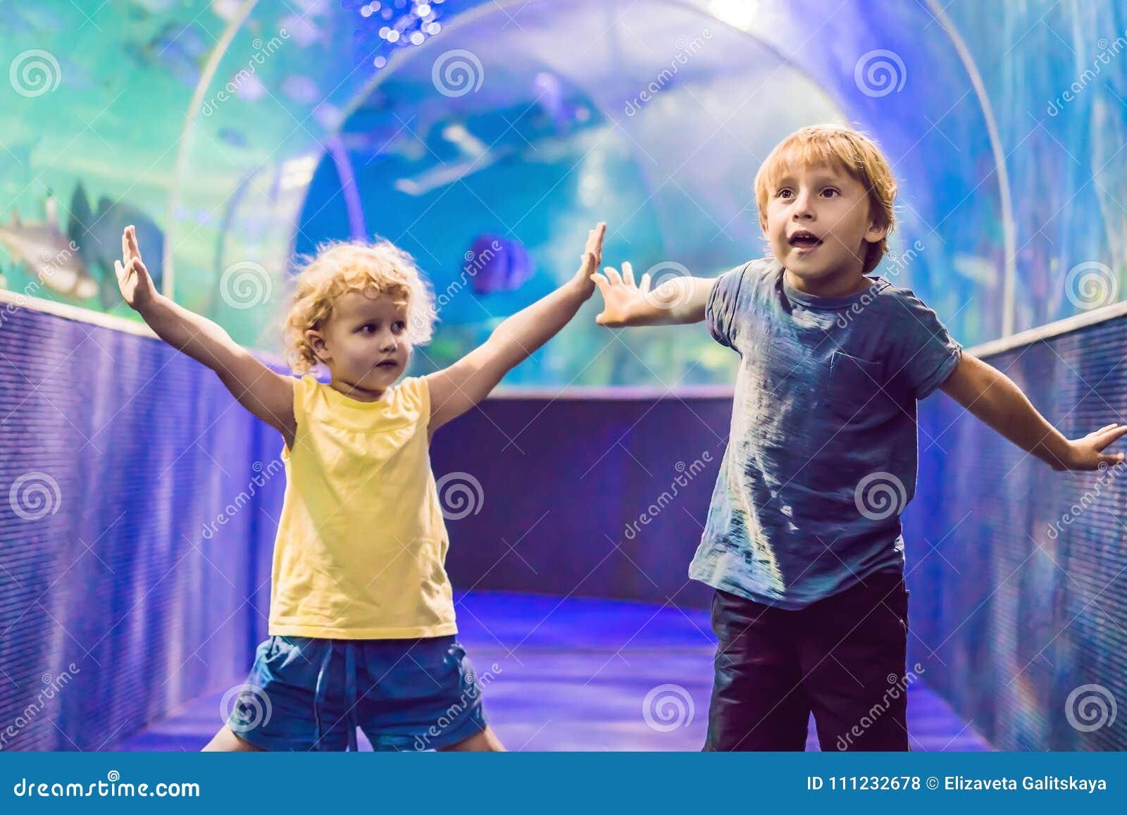 Chłopiec i dziewczyna ogląda tropikalnego koral łowimy w wielkim dennego życia zbiorniku Dzieciaki przy zoo akwarium