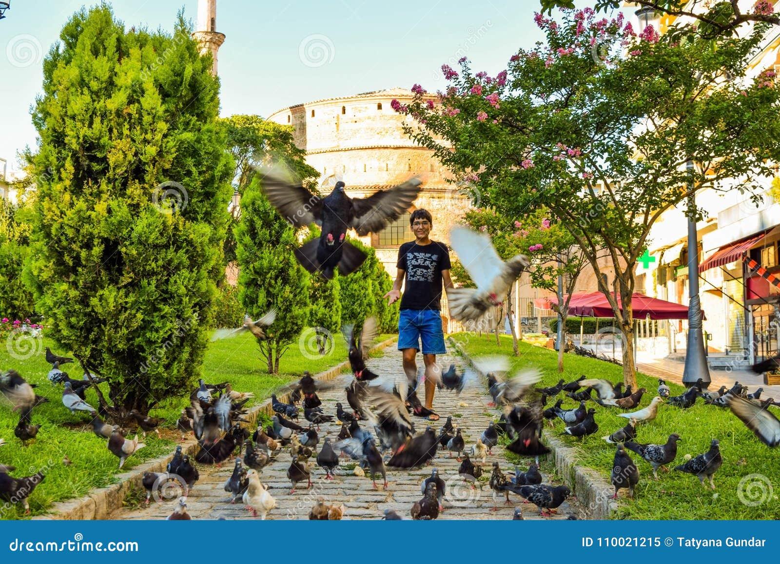 Chłopiec i gołębie