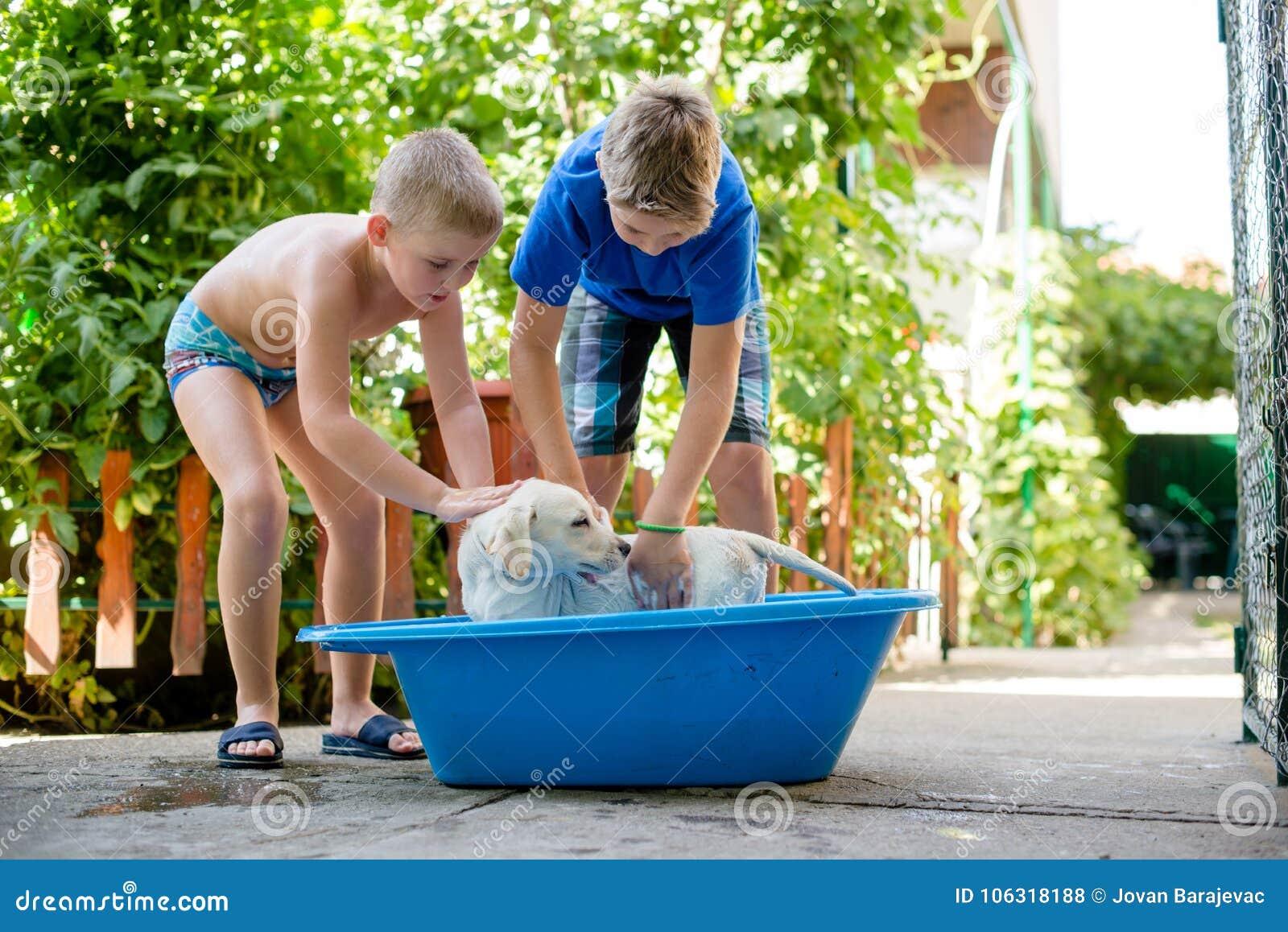 Chłopiec myją ich psa