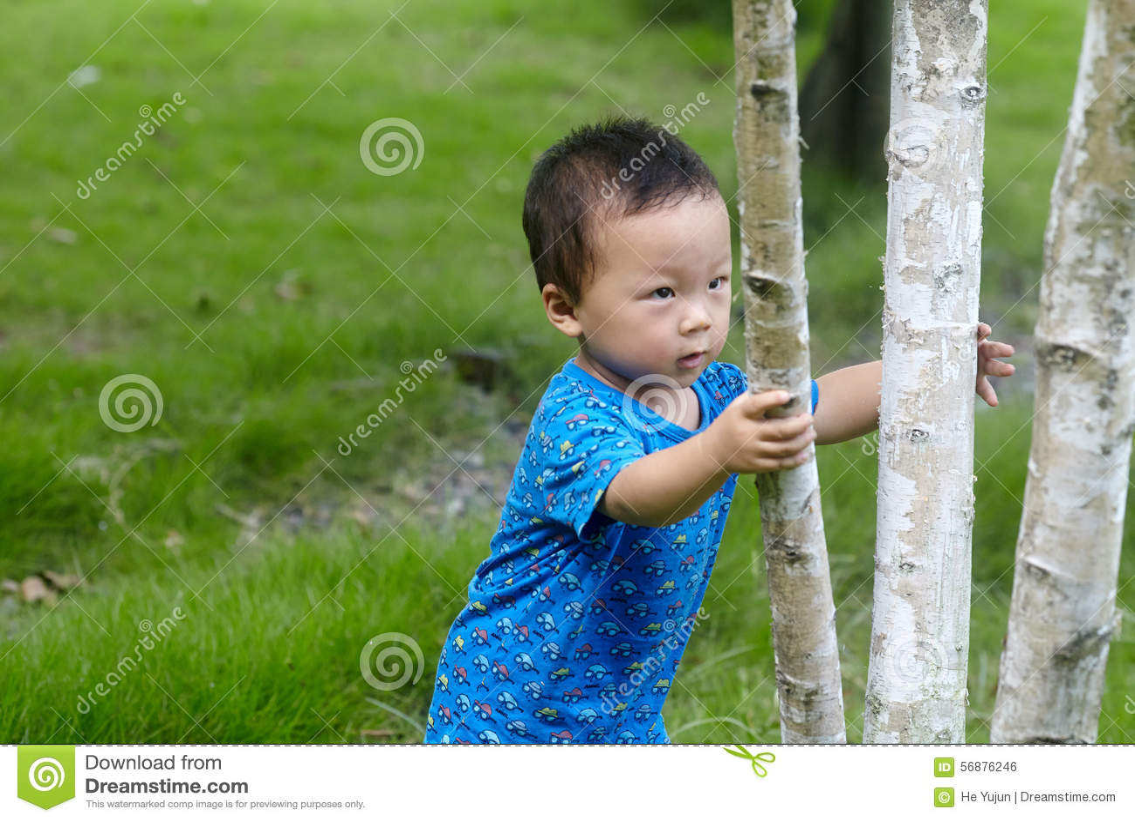 Chłopiec wspinaczkowy drzewo