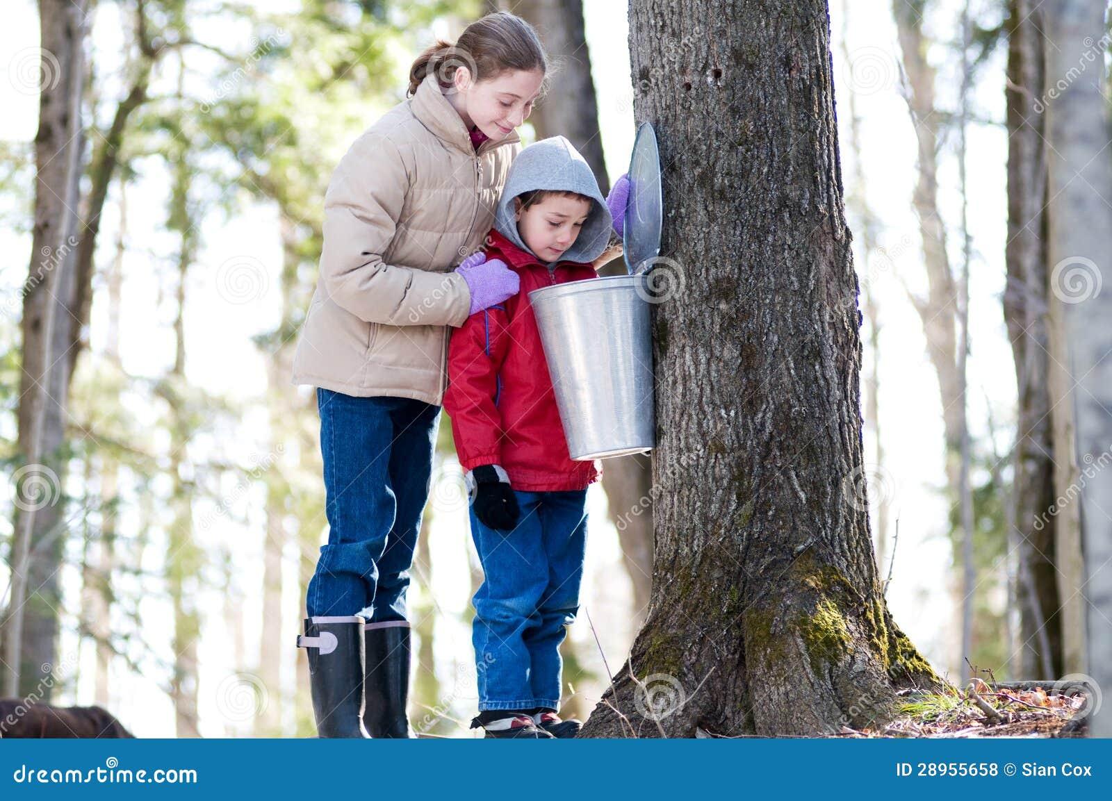 Chłopiec i dziewczyna patrzeje w aproszie forsujemy