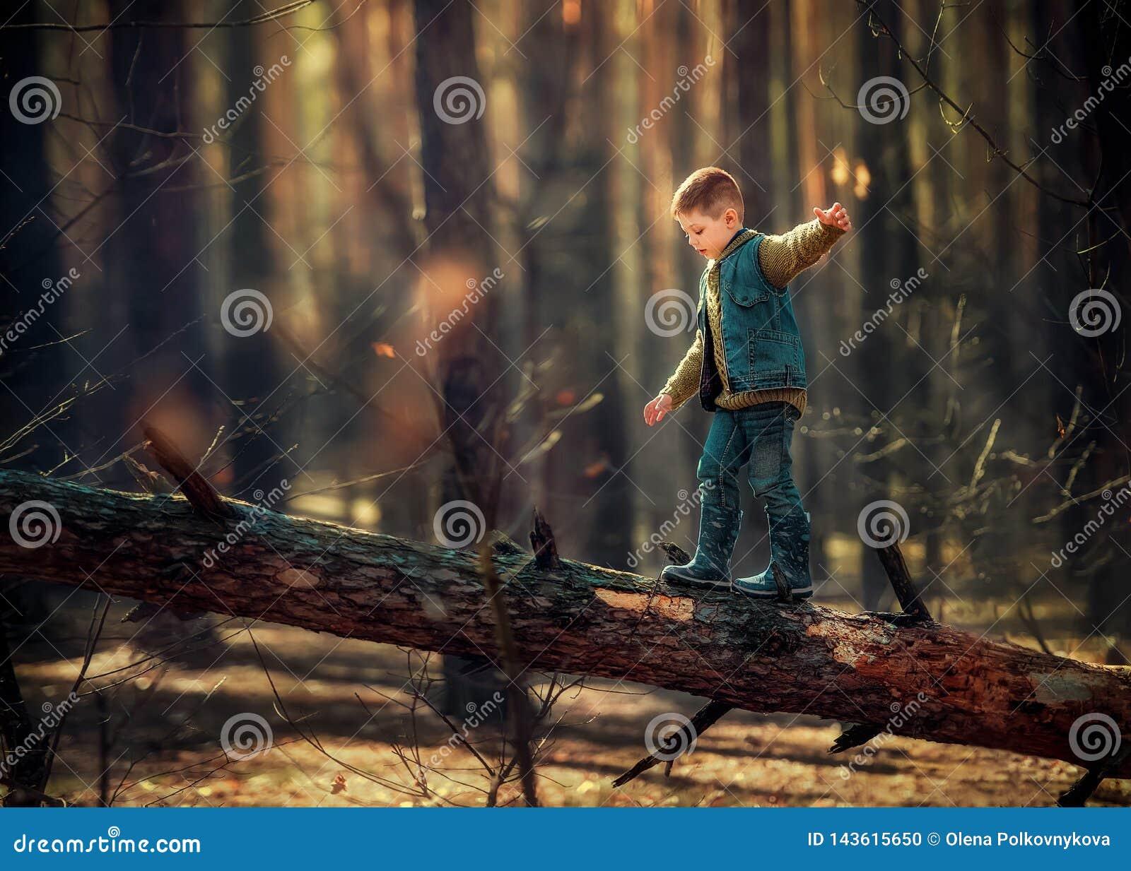 Ch?opiec w drzewie
