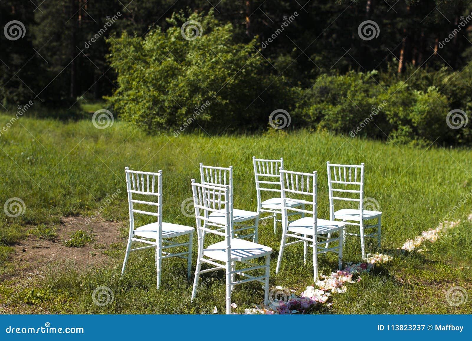 Chairs on wedding ceremony