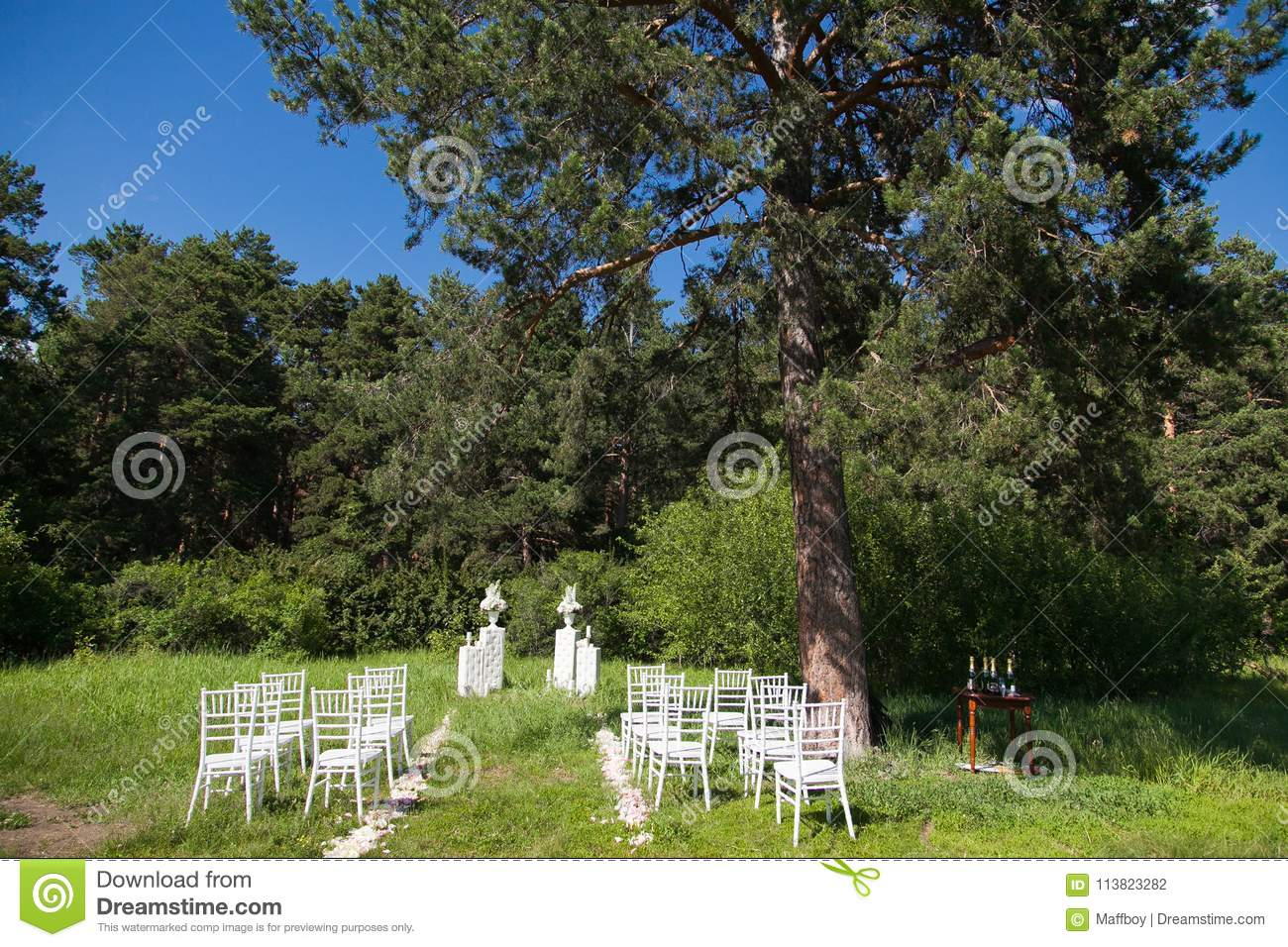 Chairs on wedding ceremony
