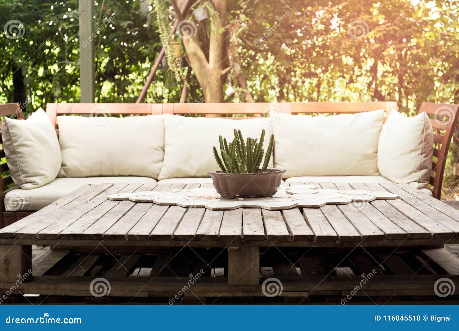 Chaise longue en bois de jardin avec le coussin et petit cactus sur