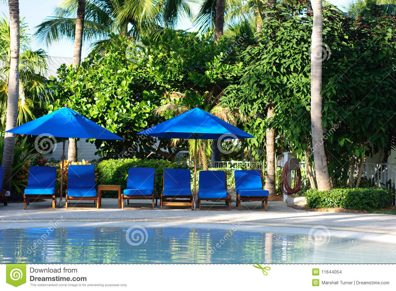 chaise lounge chairs by the pool stock images calm chaise lounge chairs