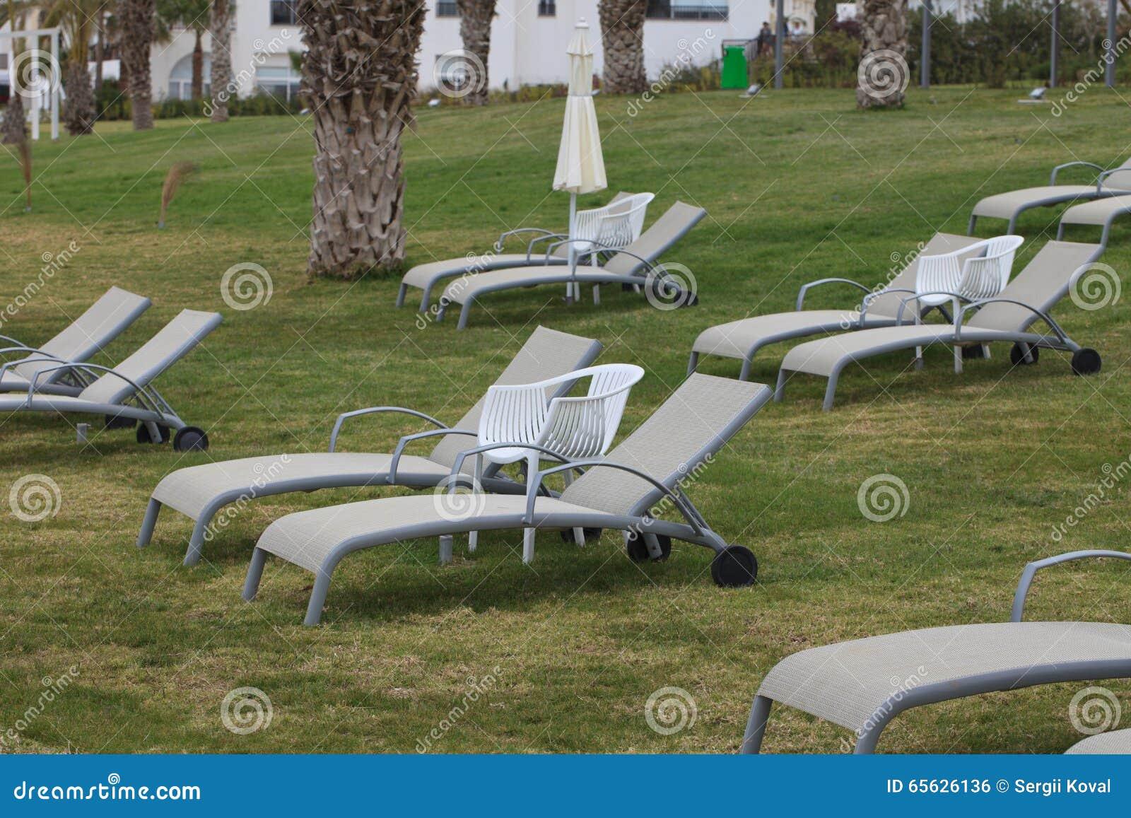 Chaises longues sur le plan rapproché de pelouse horizontal