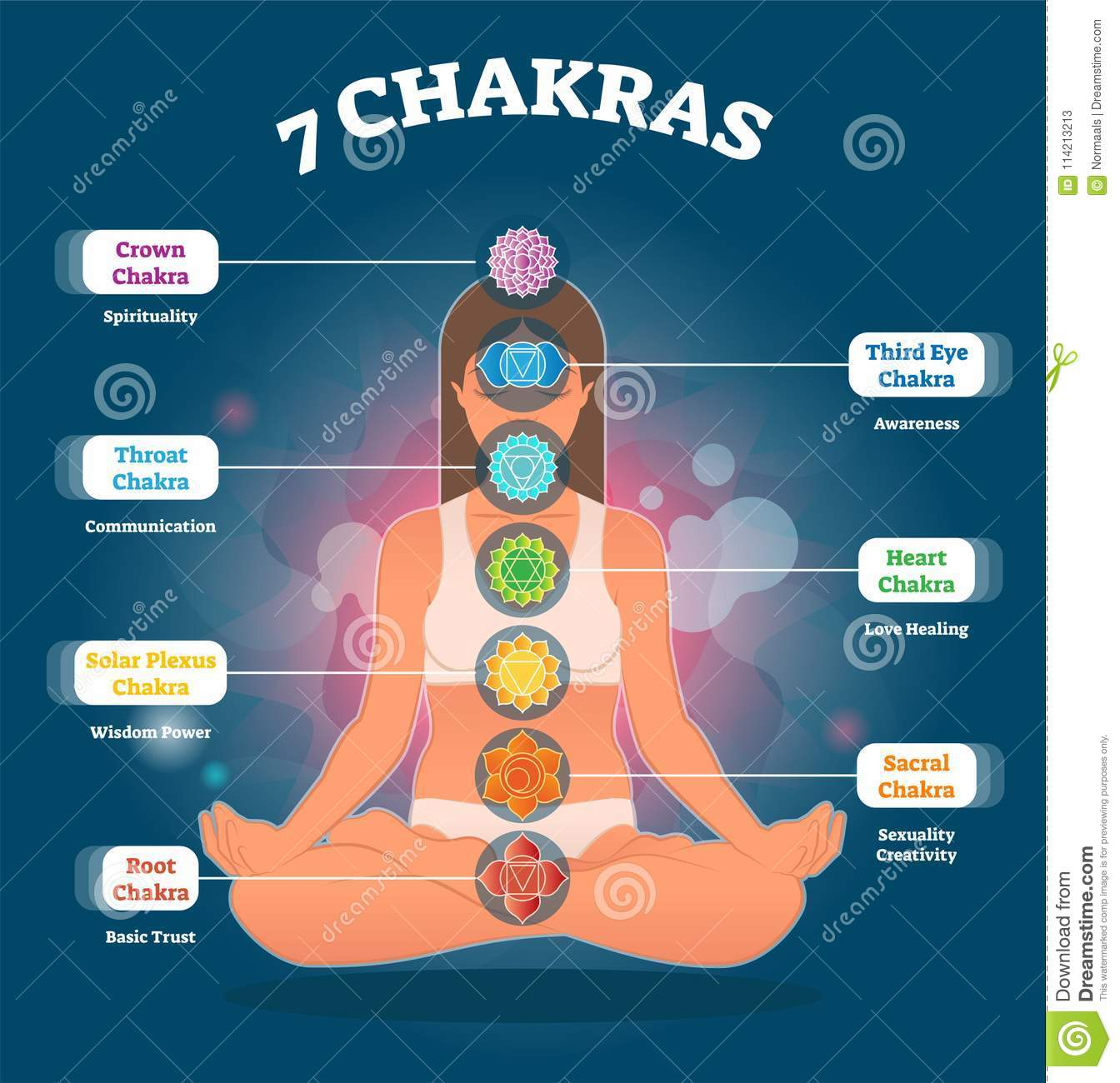 7 Chakra Meanings And Symbols Vector Illustration Diagram With