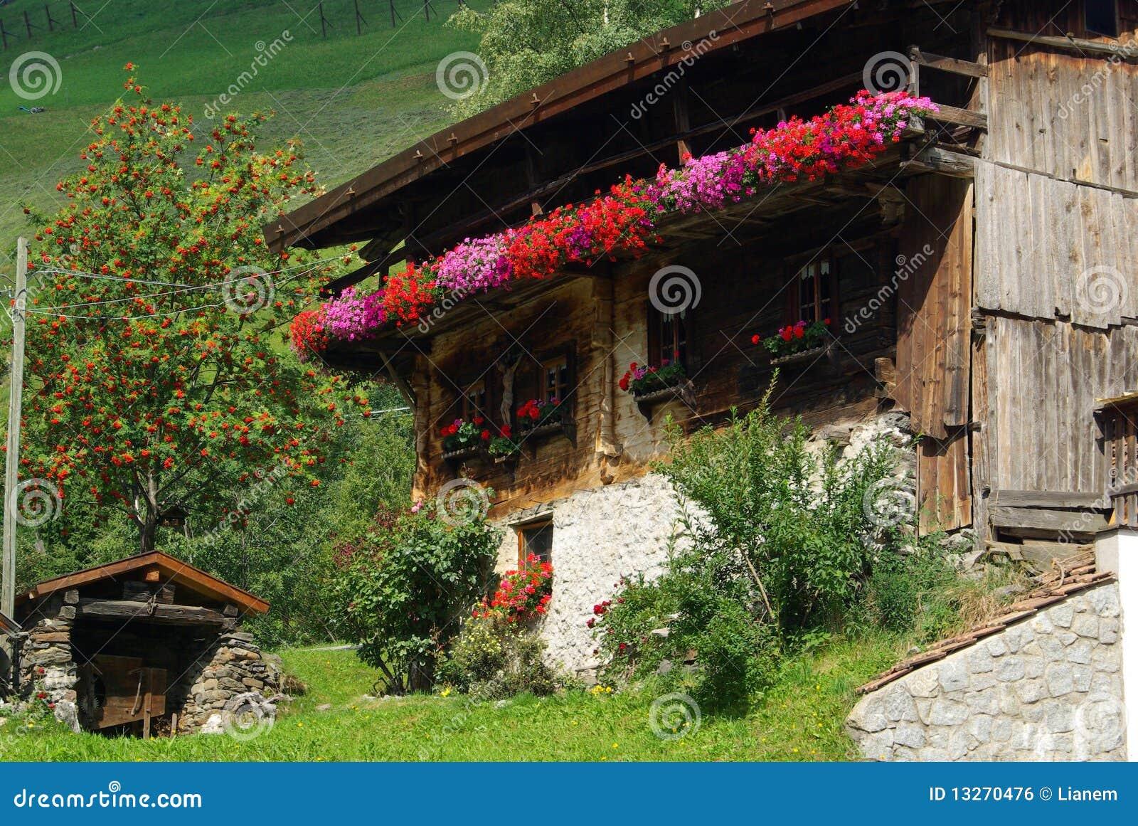 Download Chalet stock photo. Image of farm, botanical, austria - 13270476