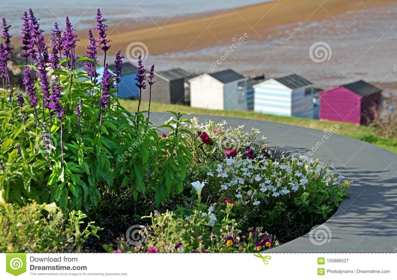Chalet huts by the sea and flora
