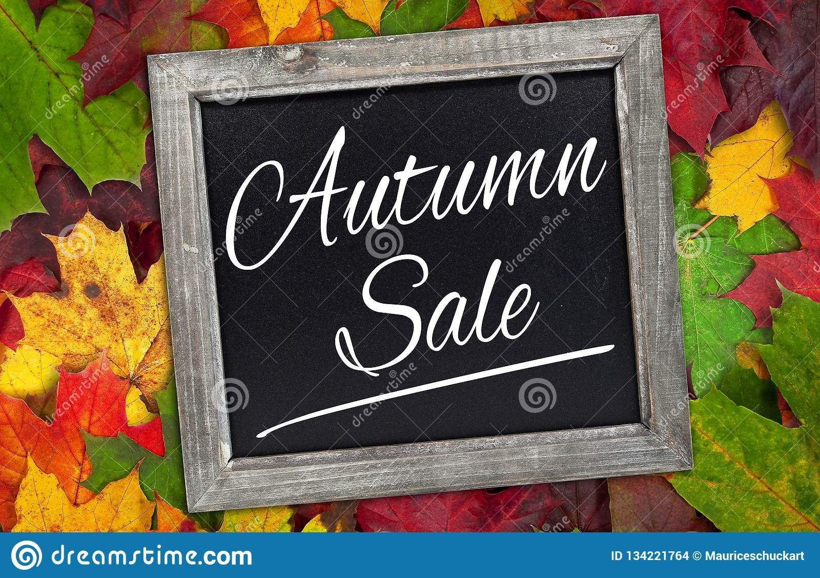 Chalkboard with autumn leaves and autumn sale