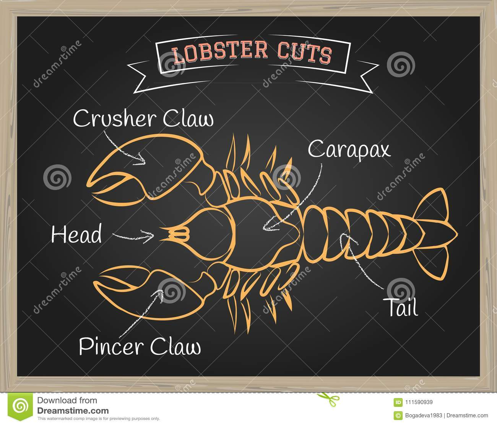 Lobster Cuts Illustration stock illustration. Illustration of animal ...