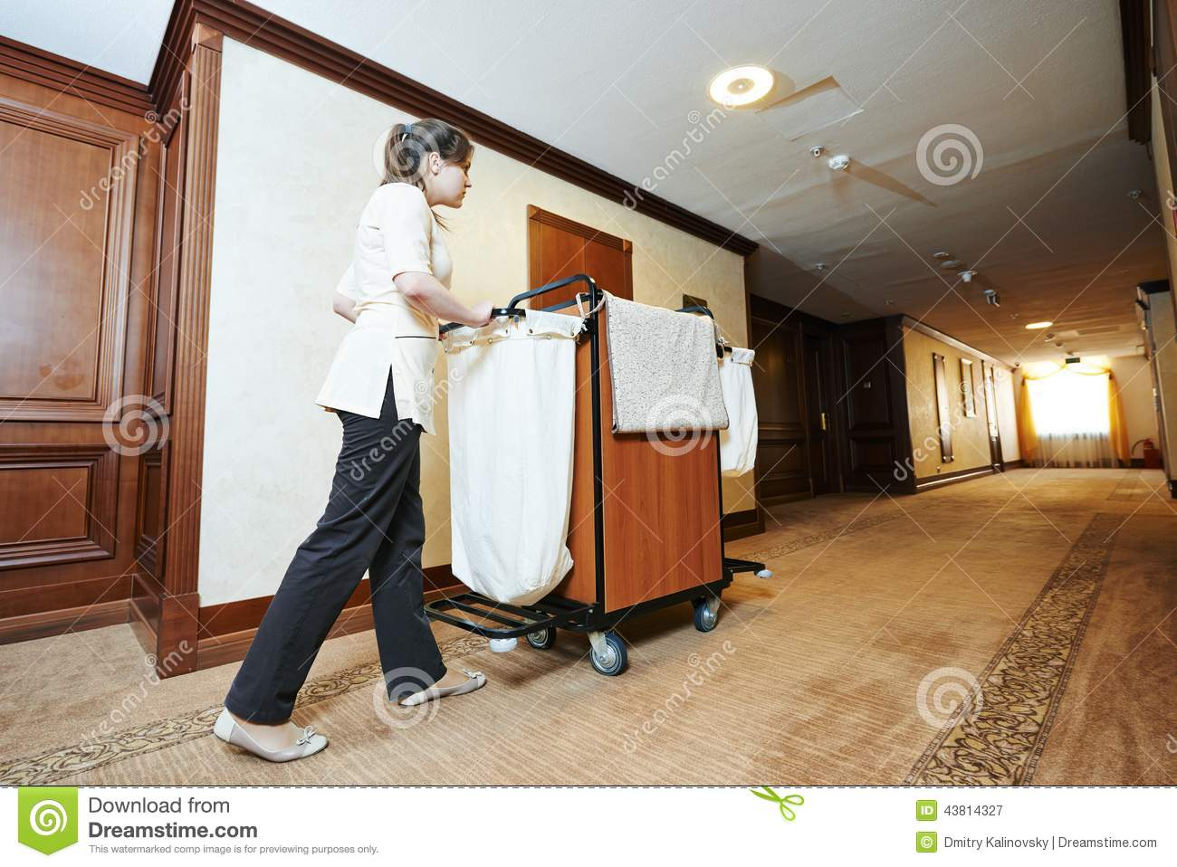 Chambermaid at hotel stock photo image 43814327 for Hotel room service cart