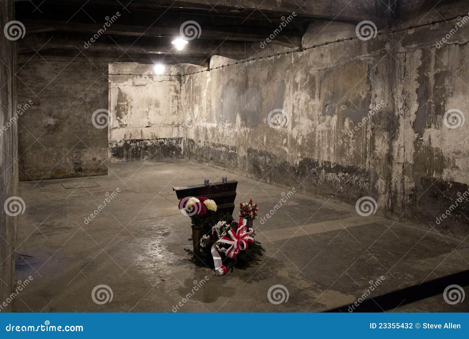 chambre gaz d 39 auschwitz pologne photographie ditorial image du barri re nazis 23355432. Black Bedroom Furniture Sets. Home Design Ideas