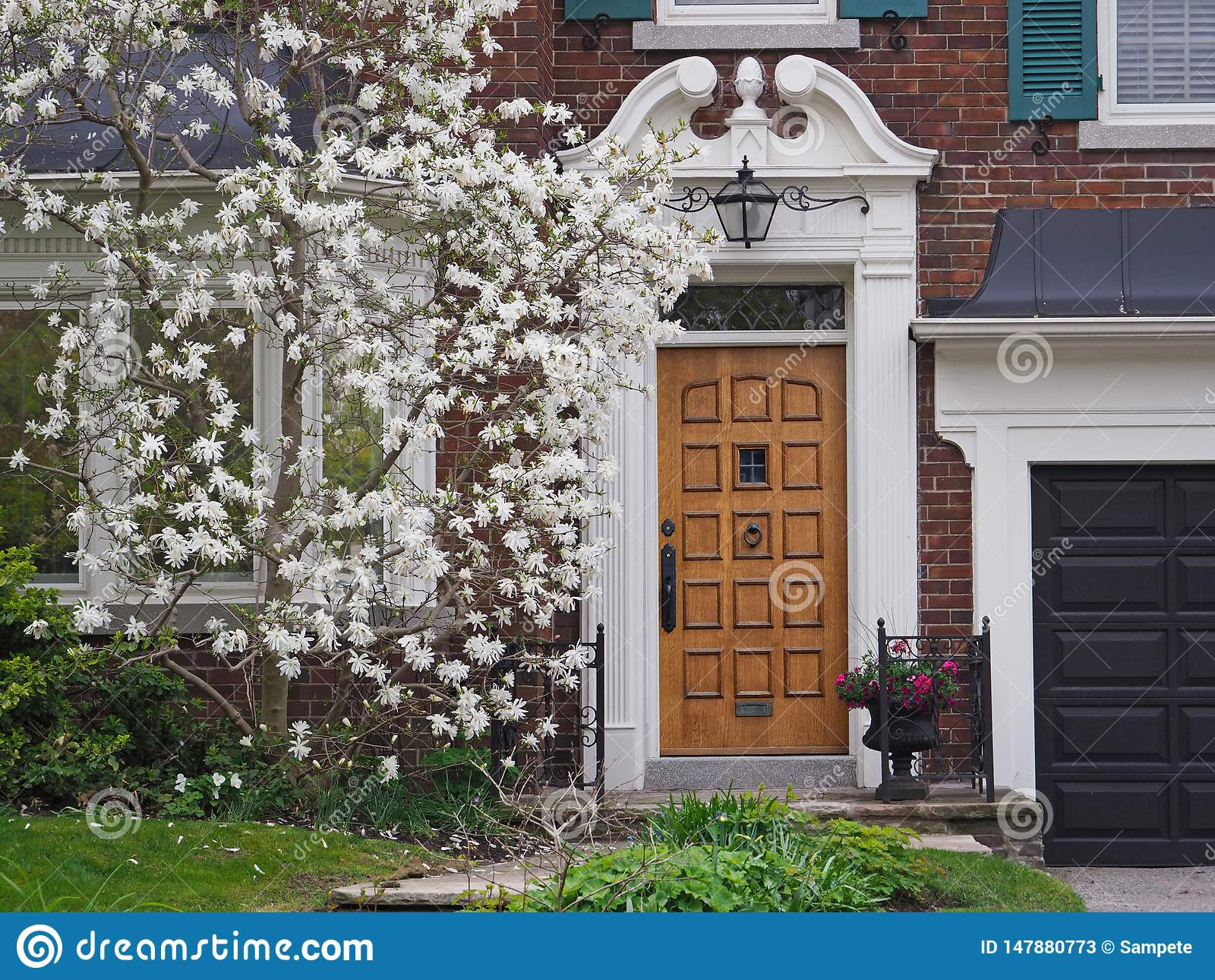 Chambre avec l arbre blanc de magnolia en fleur