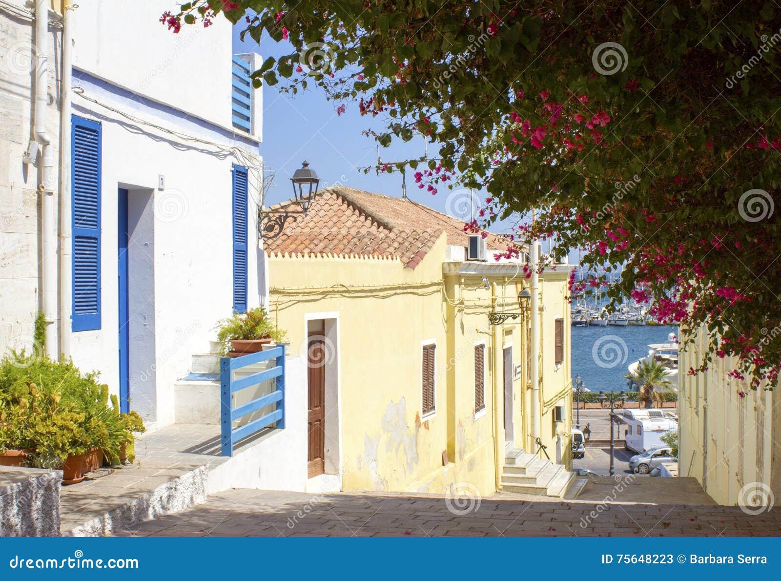 Chambre Bleue Et Blanche Avec La Bouganvillee Image Stock