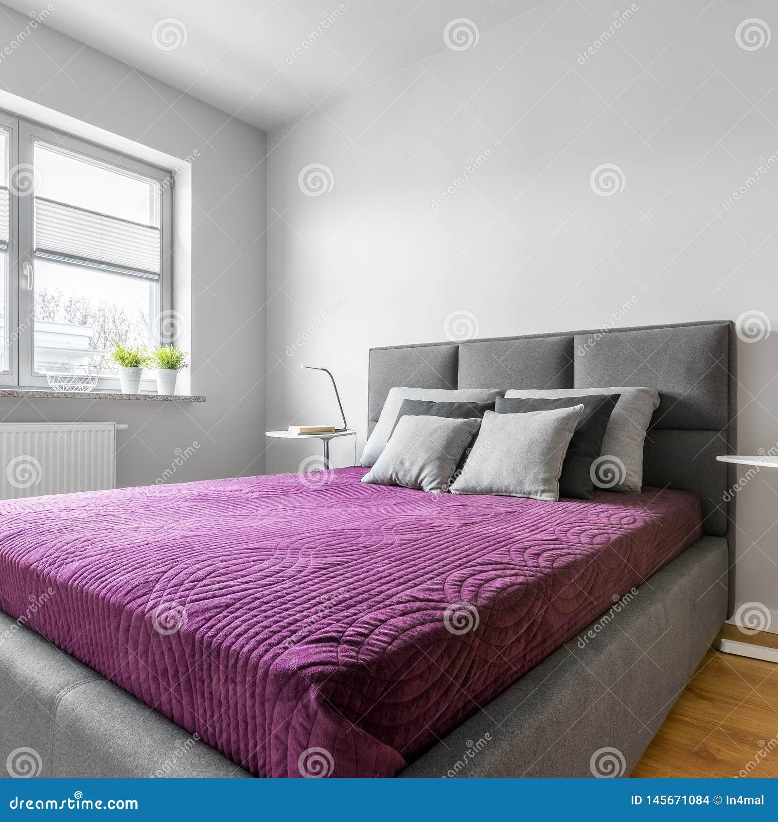 Chambre Coucher Simple Avec Le Lit Tapiss Photo Stock