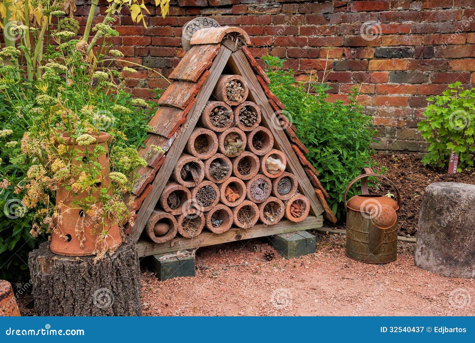 Chambre d insecte ou d insecte