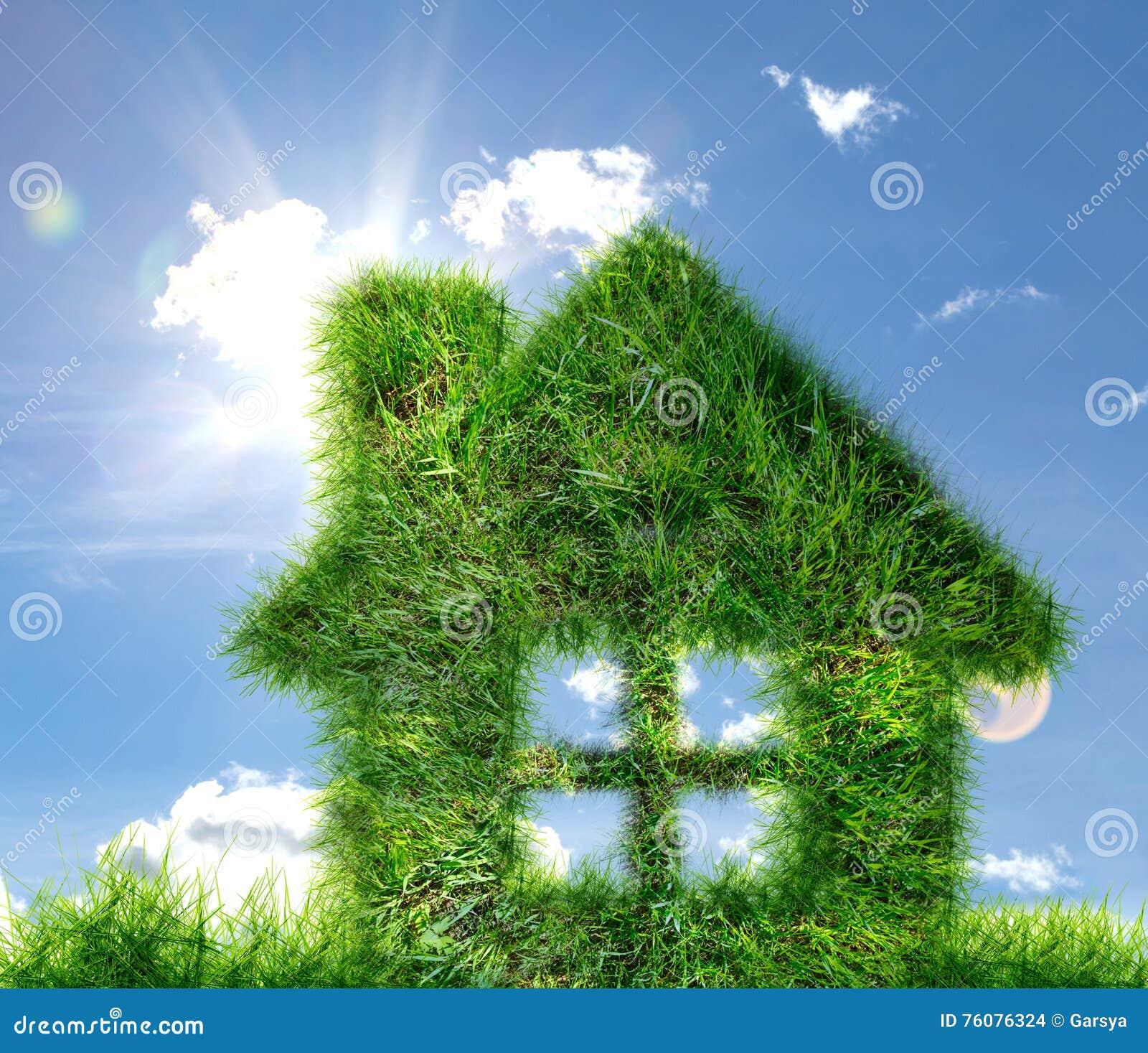 Chambre faite en herbe verte sur le ciel bleu