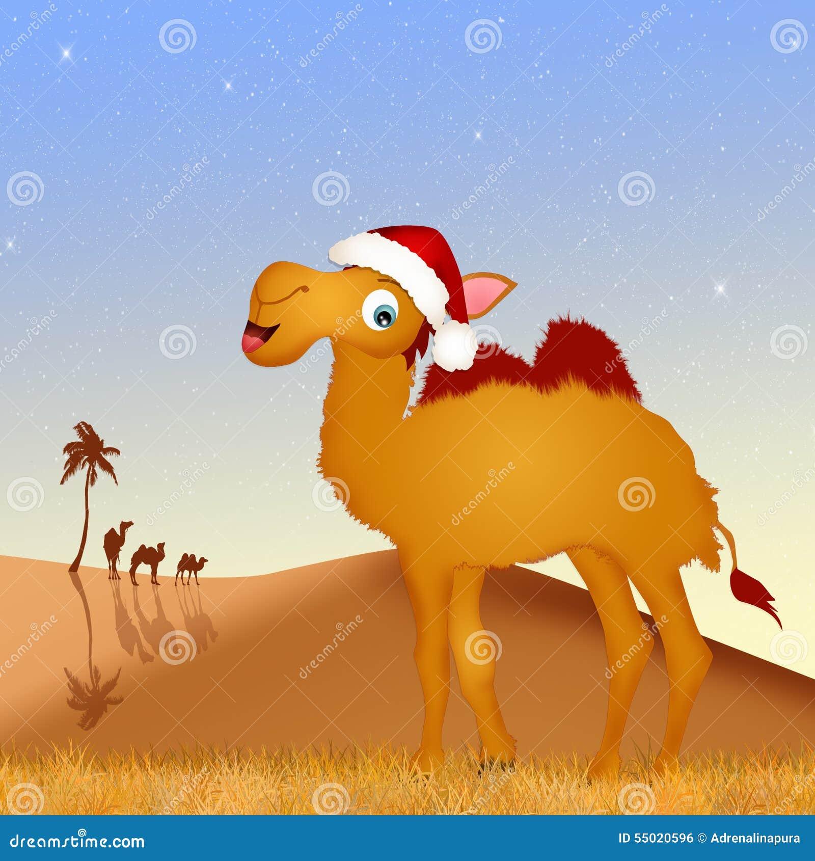 Chameau Avec Le Chapeau De Noël Illustration Stock