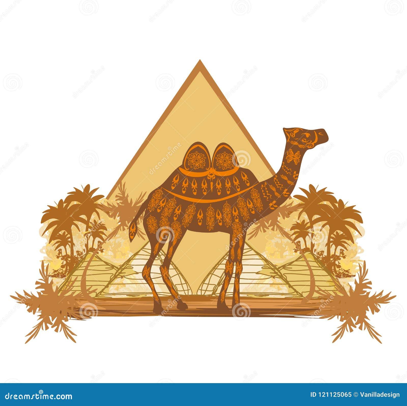 Chameau dans le désert de l Egypte - bannière