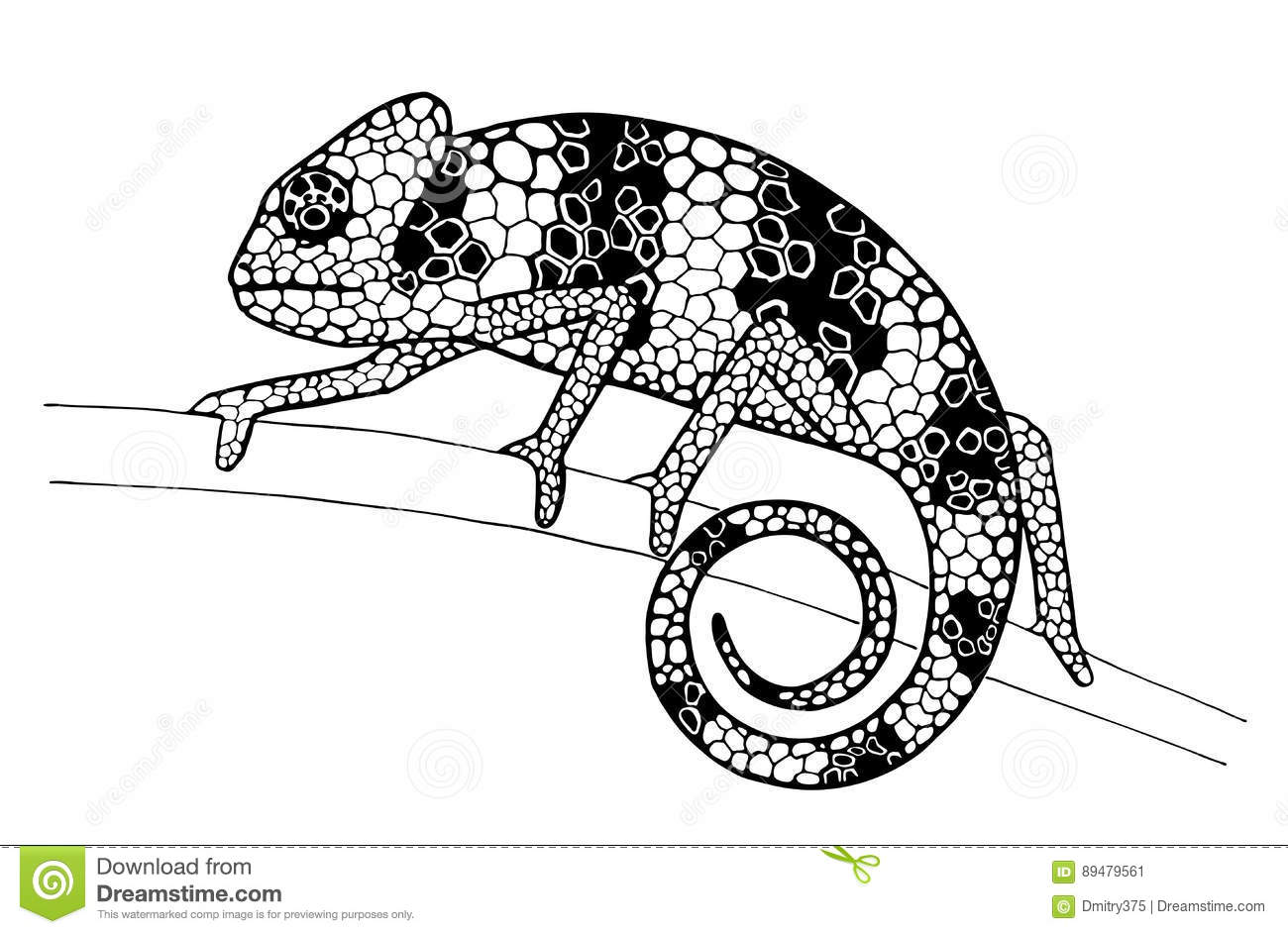 9b4e363fc Chameleon on a branch, ink drawing. Hand drawn black and white chameleon  sitting on