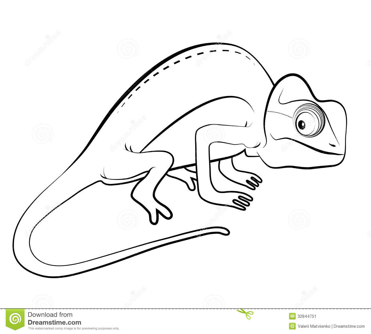 Chameleon Drawing Template