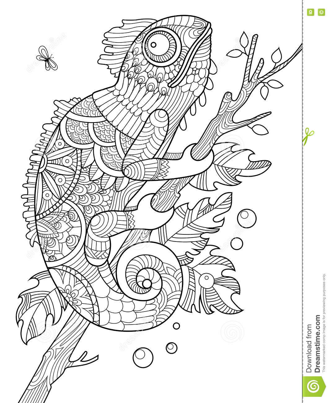 Chameleon coloring book for adults vector stock vector for Zentangle per bambini