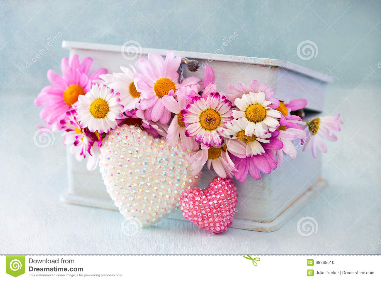 Chamomile Flowers In A Box Stock Image