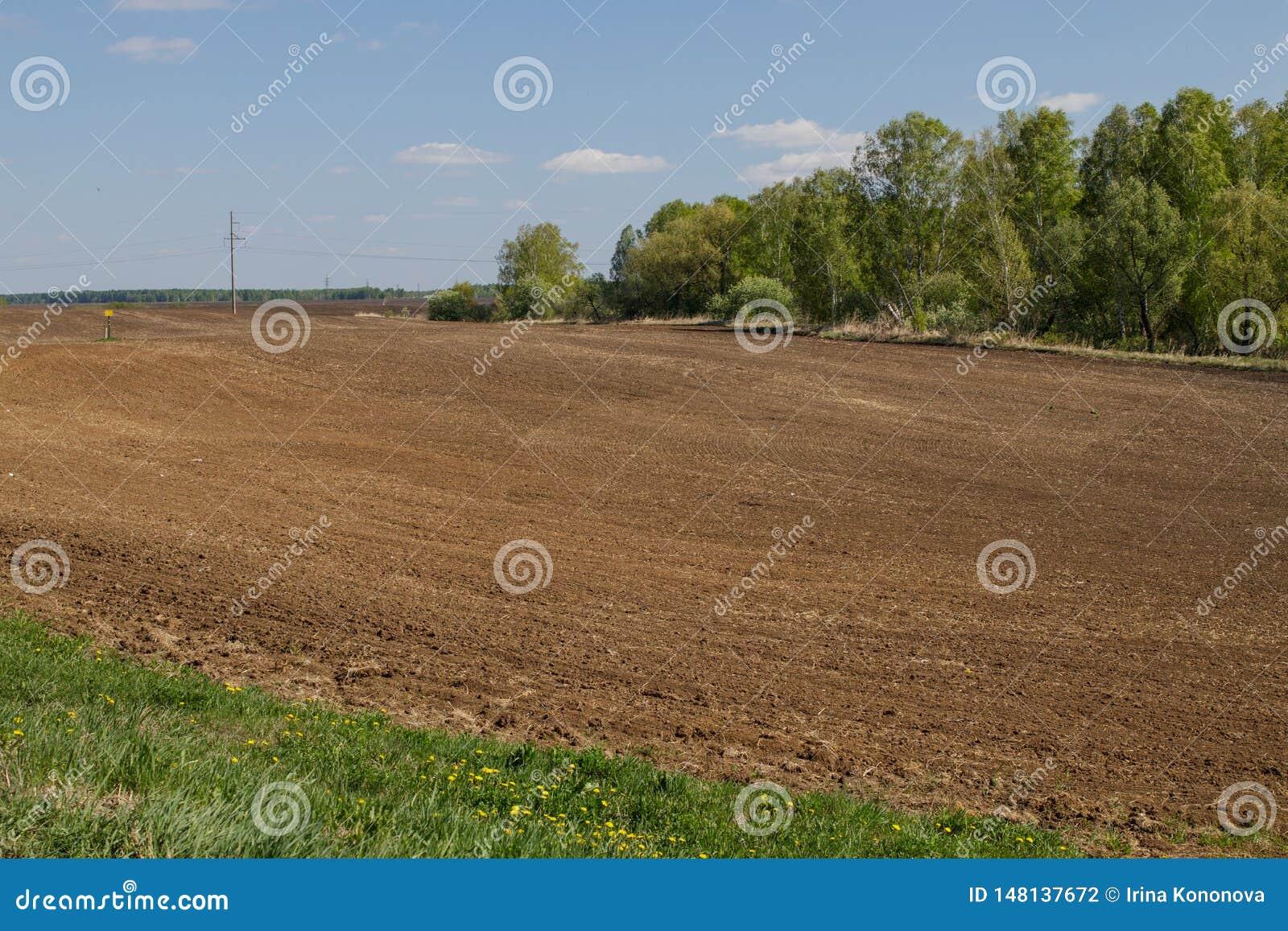 Champ agricole labour? pr?par? pour des cultures de plantation en Sib?rie, Russie