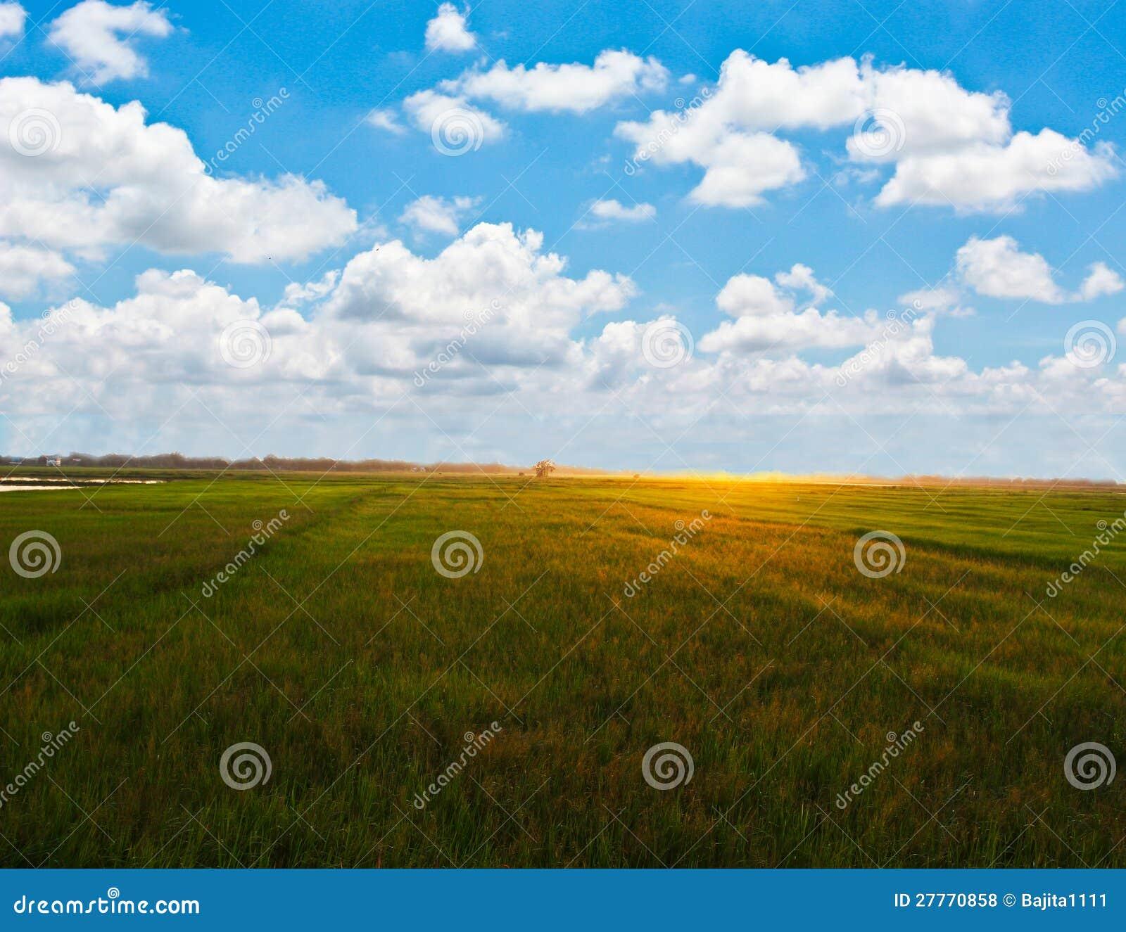 Champ d Addy avec le beau ciel bleu