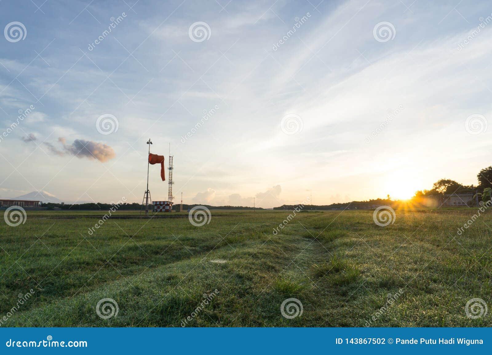 Champ d herbe avec le lever de soleil et le fond de ciel bleu