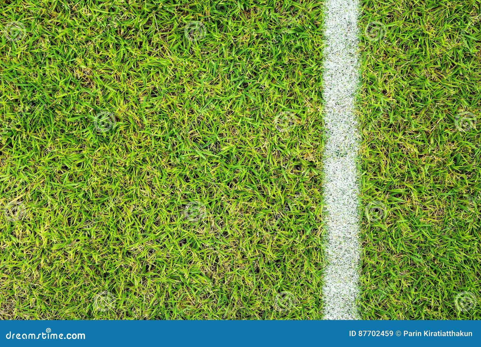 Champ d herbe du football du football