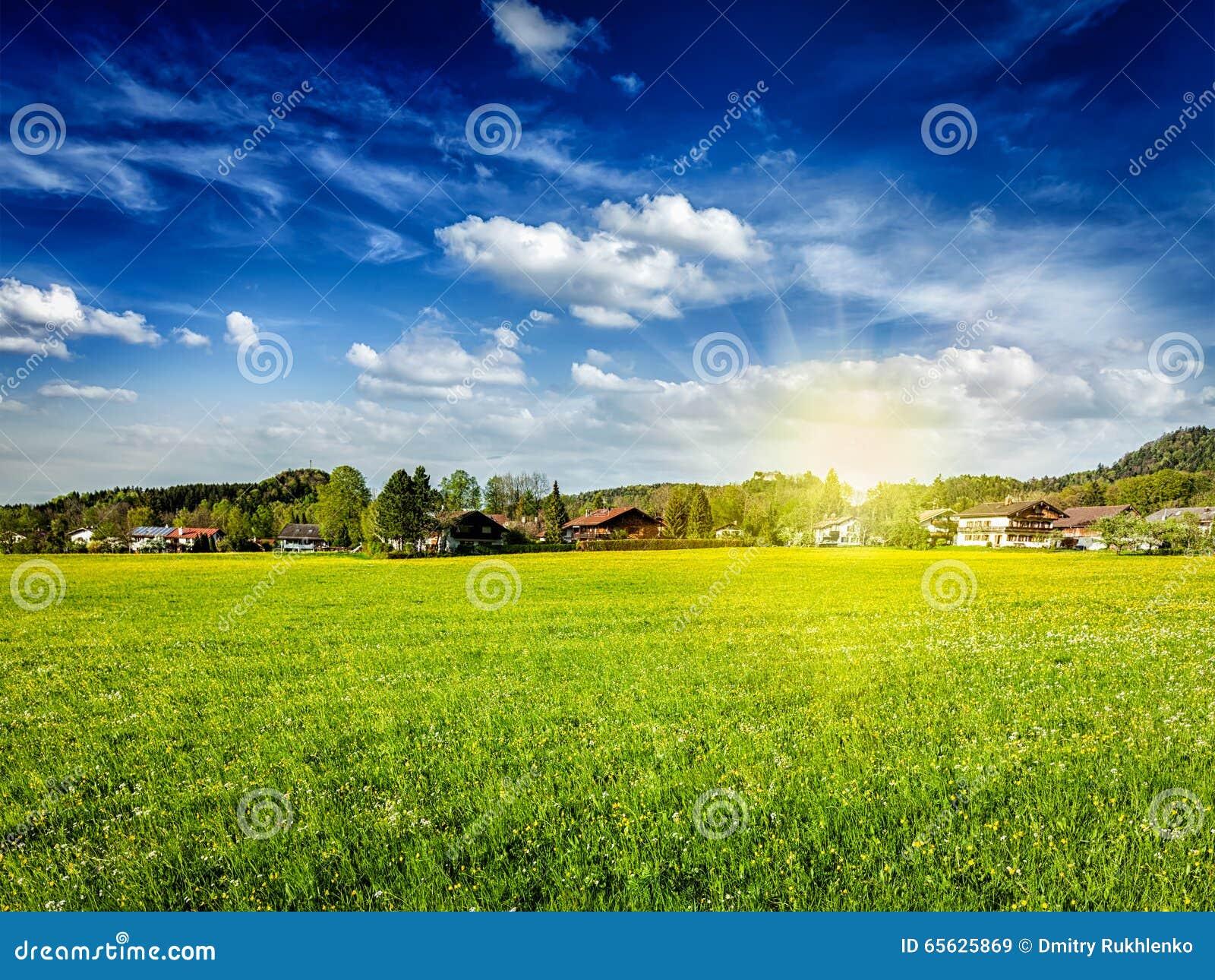 Champ de pré de campagne avec le soleil et le ciel bleu