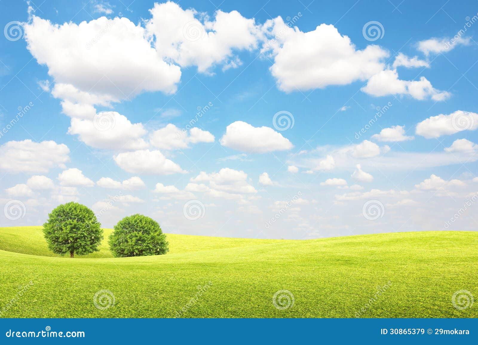 Champ Et Arbre Verts Avec Le Ciel Bleu Et Les Nuages Images Libres De Droits Image 30865379