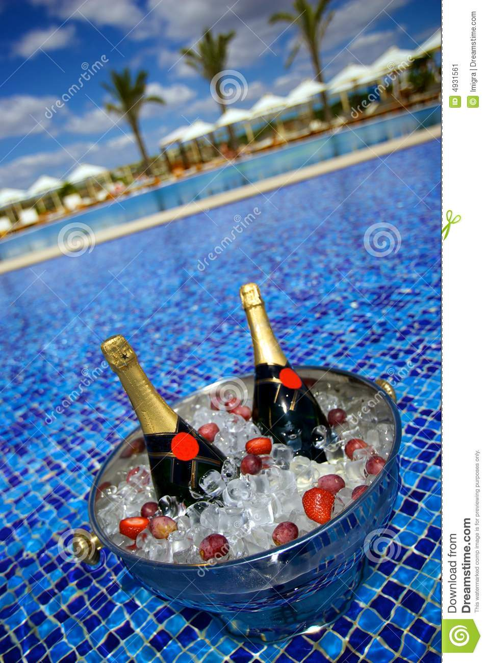 Champagne bottles on ice in a swimming pool stock image How to make swimming pool water drinkable