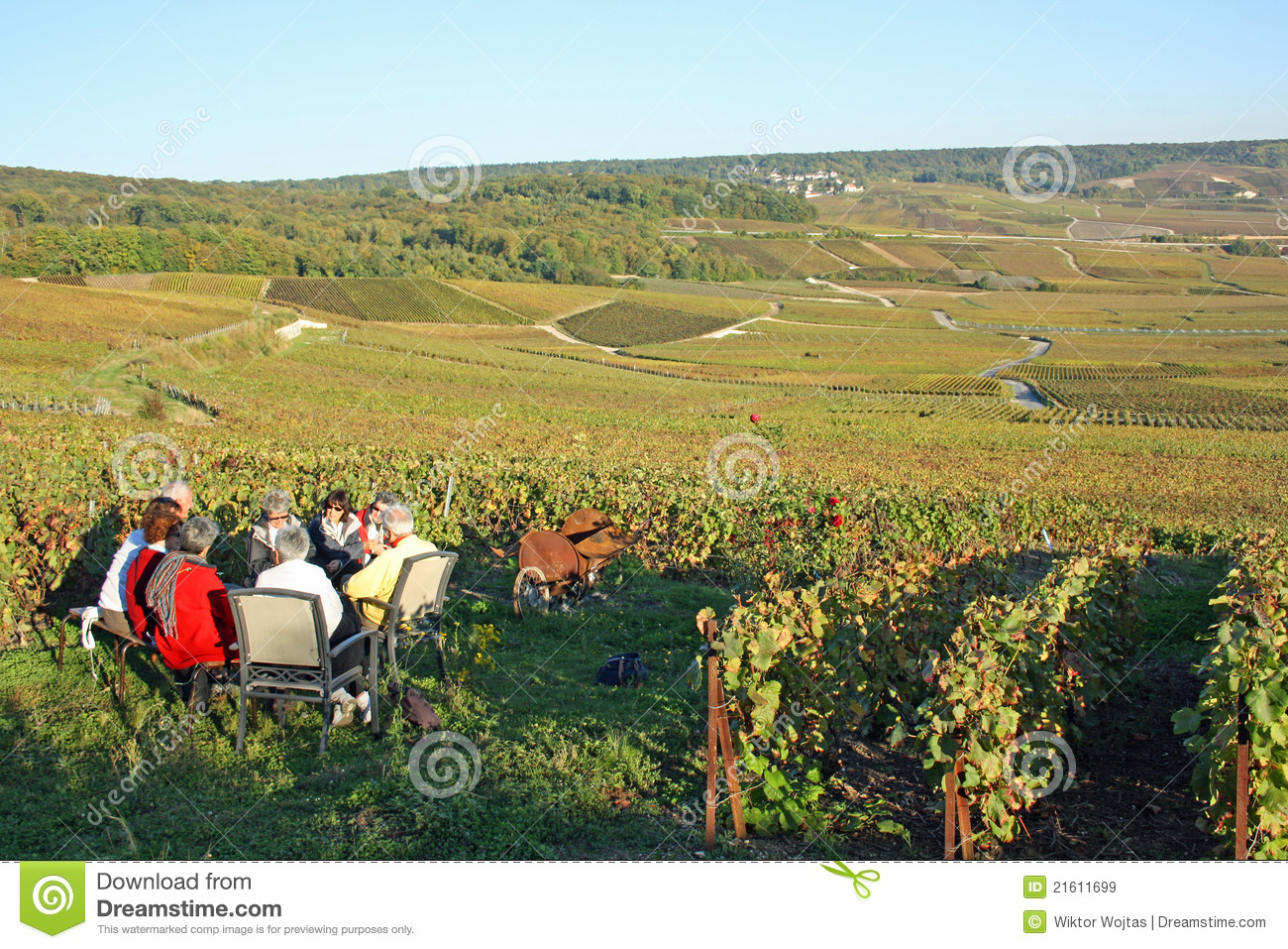 Download Champagne Tasting In The Vineyard Editorial Stock Image - Image of house, tribaut: 21611699