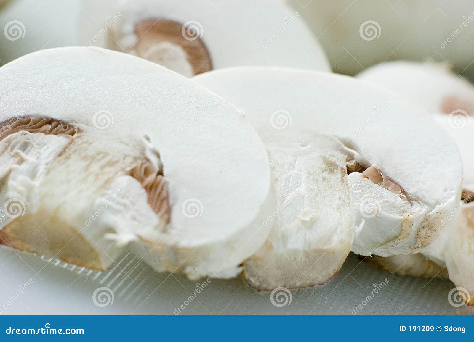 Champignon de couche