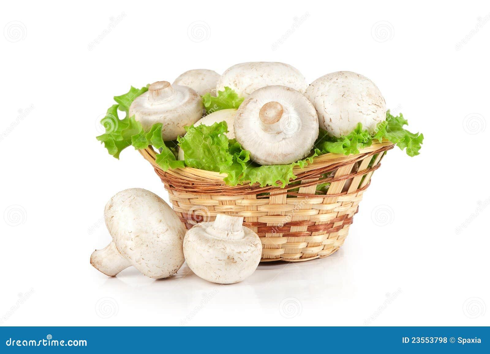 Champignon Mushroom In A Basket Stock Photo - Image of snack, champignon: 23553798