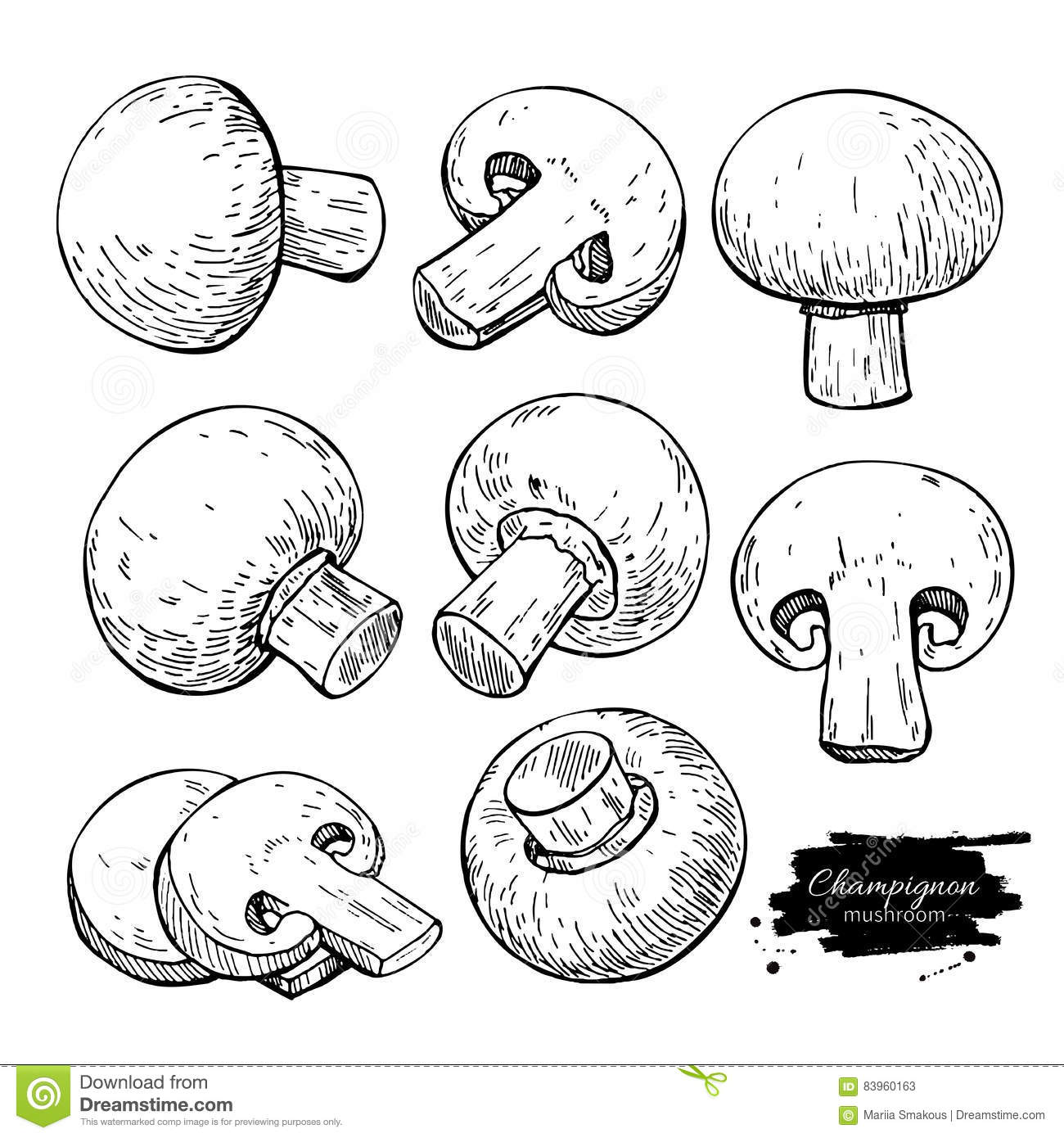 09c5d0e6e60 Champignon mushroom hand drawn vector illustration set. Sketch food drawing  isolated on white background. Organic vegetarian product. Great for menu