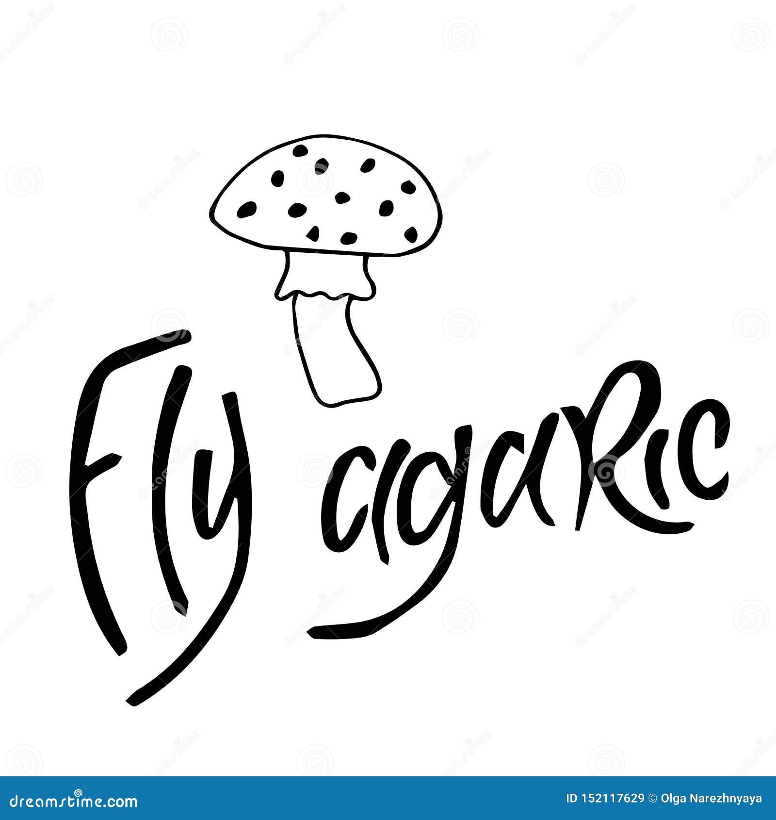 Champignons d agaric de mouche d isolement sur le fond blanc, à l encre noire, illustration, dessin de main