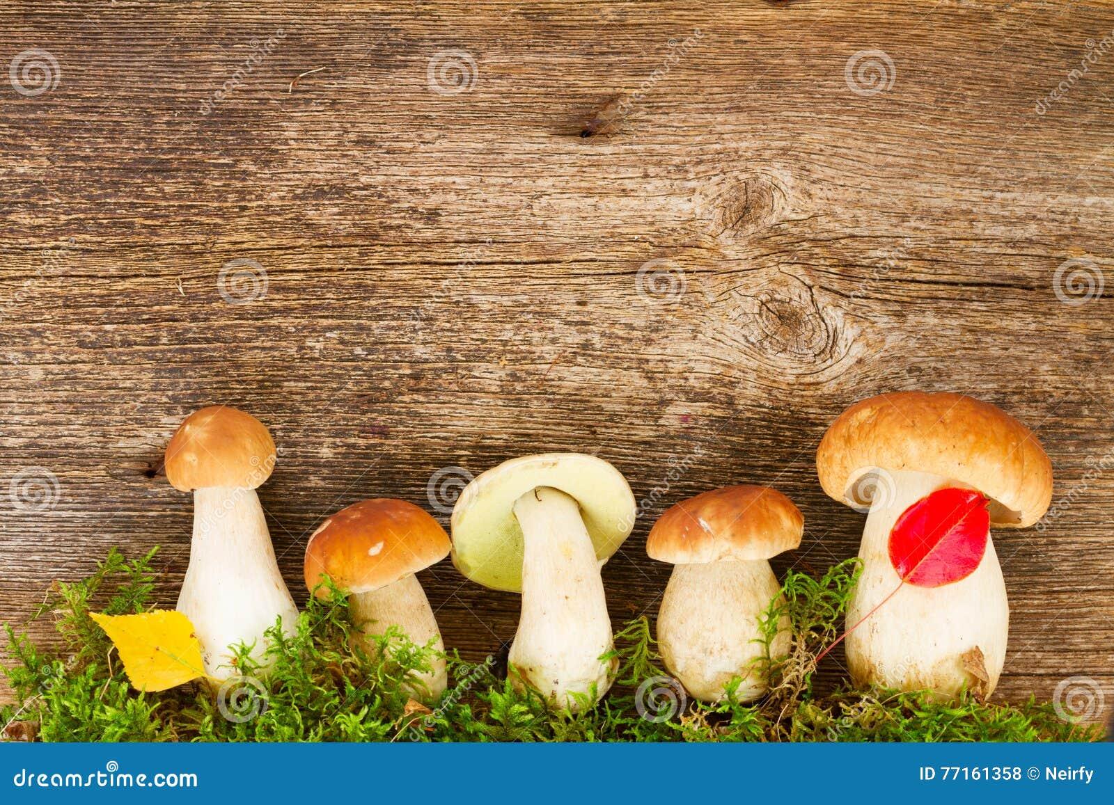 Champignons de boletus sur le fond en bois