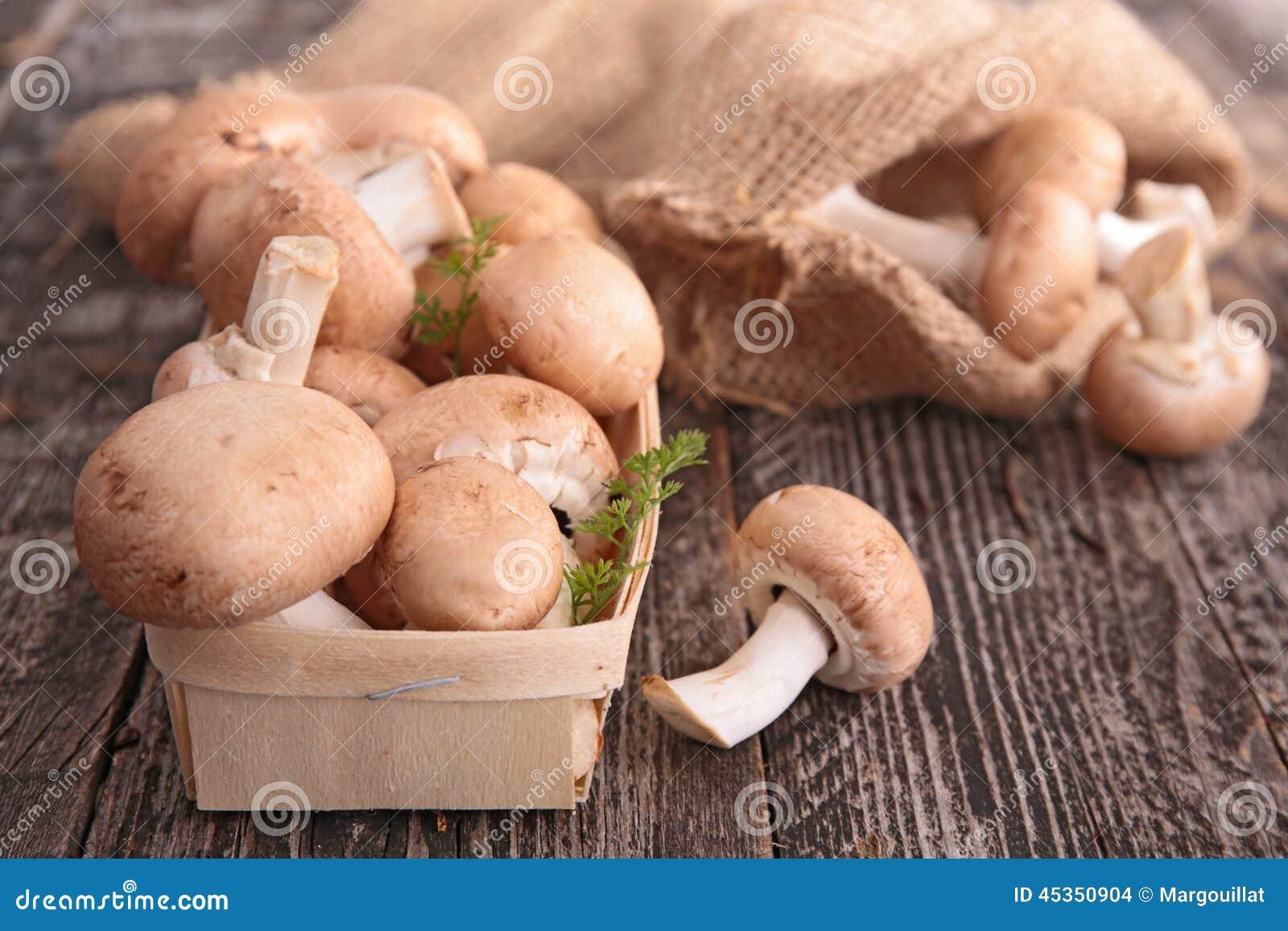 Champignons de couche frais