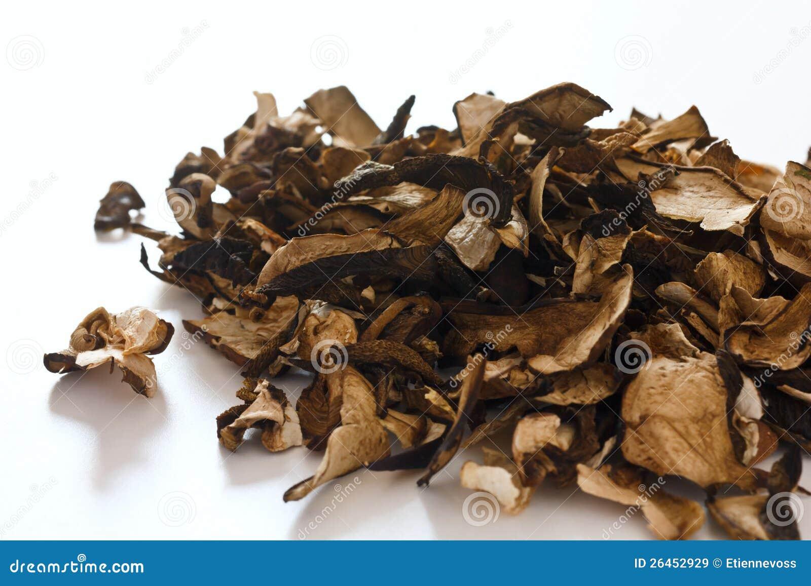 Champignons de couche secs de forêt