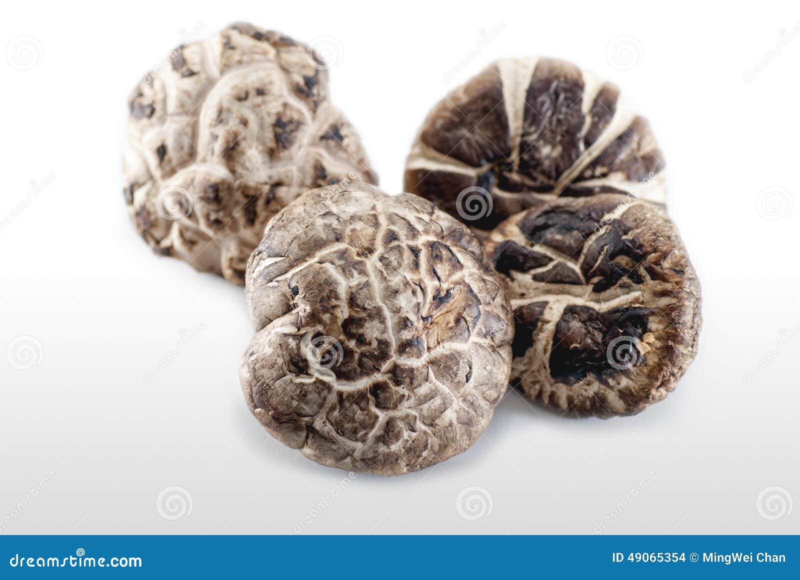Champignons secs
