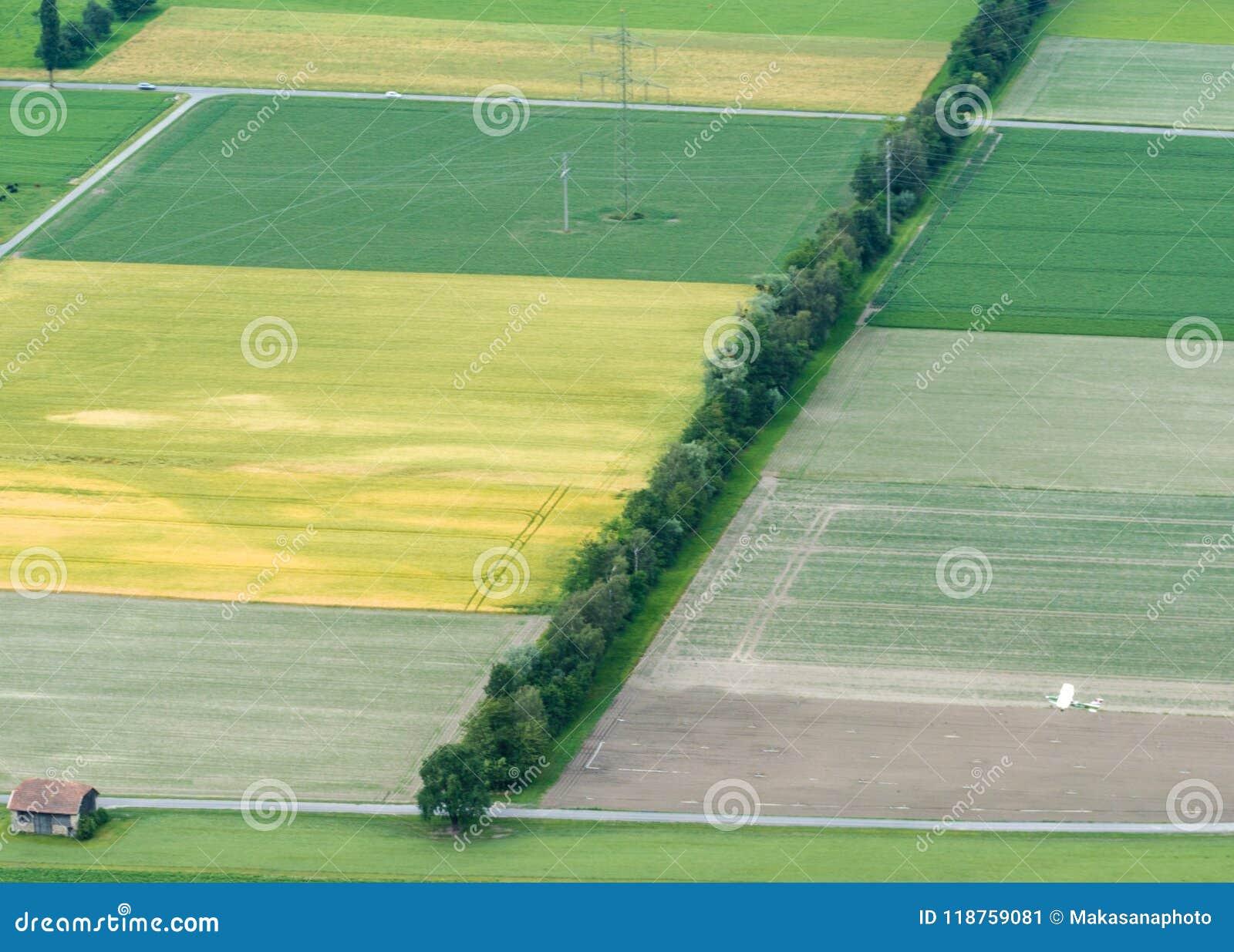 Champs de ferme et rangées des arbres avec un avion de chiffon de culture vu d en haut
