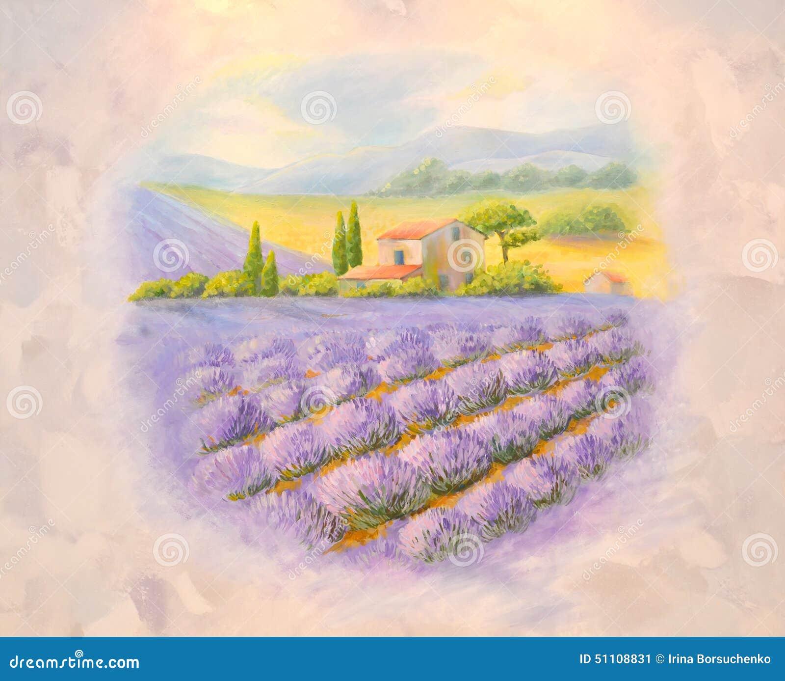 Champs de la lavande de floraison en provence une liste sur une salle illustration stock image - Floraison de la lavande ...