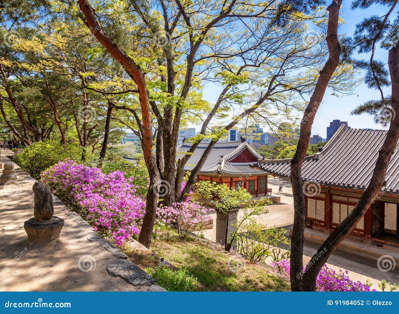 Changdeokgung Königlicher Palast In Seoul Geheimer Garten