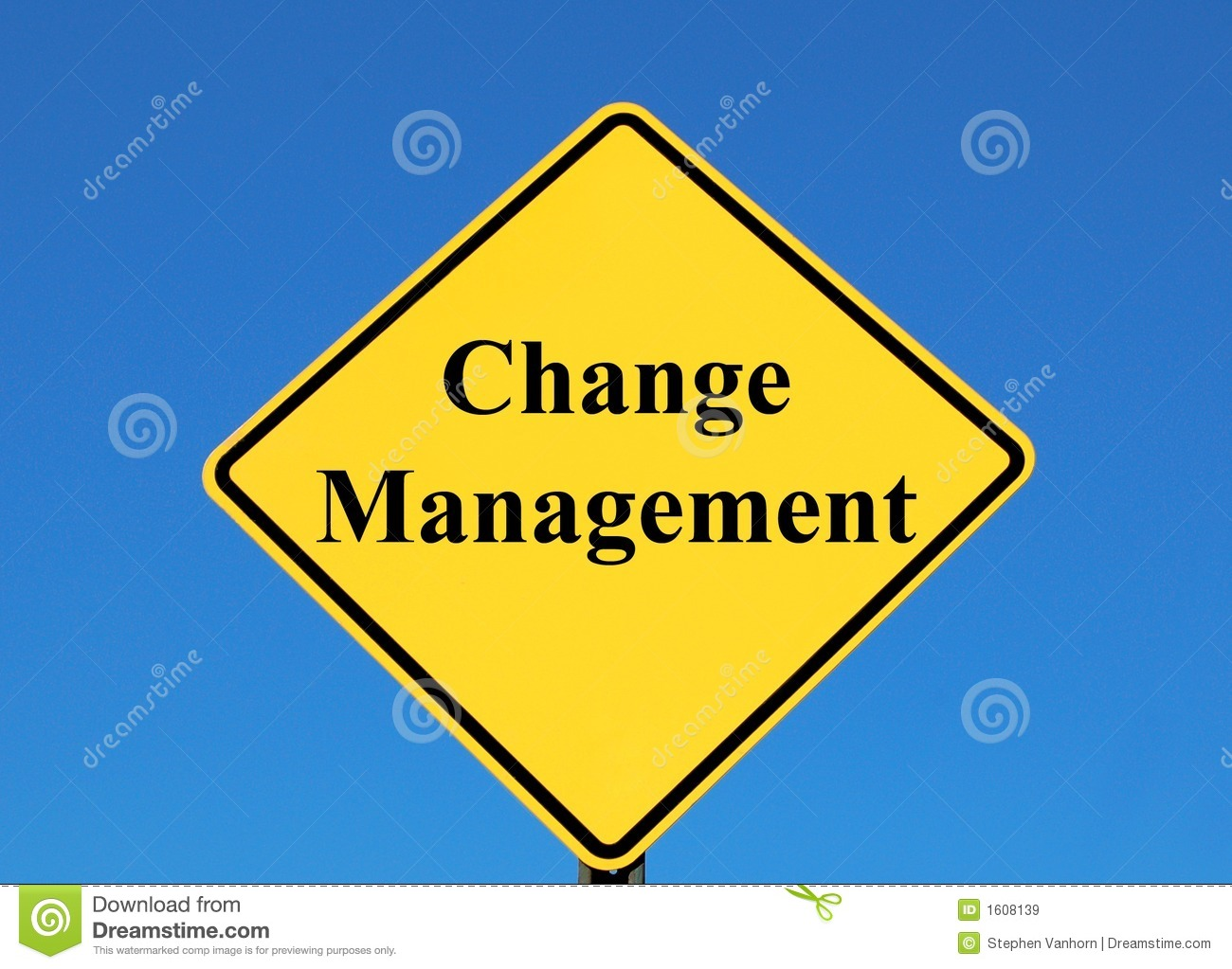 Advantages and Disadvantages of Change Management Methodology