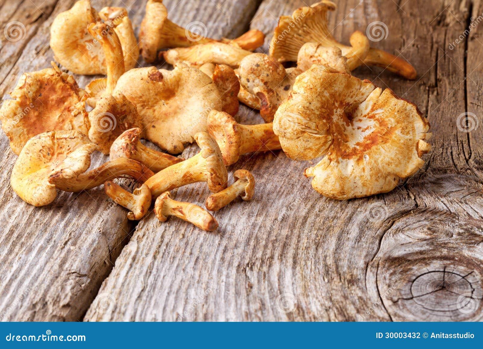 Chanterelles Mushroom Stock Photography - Image: 30003432
